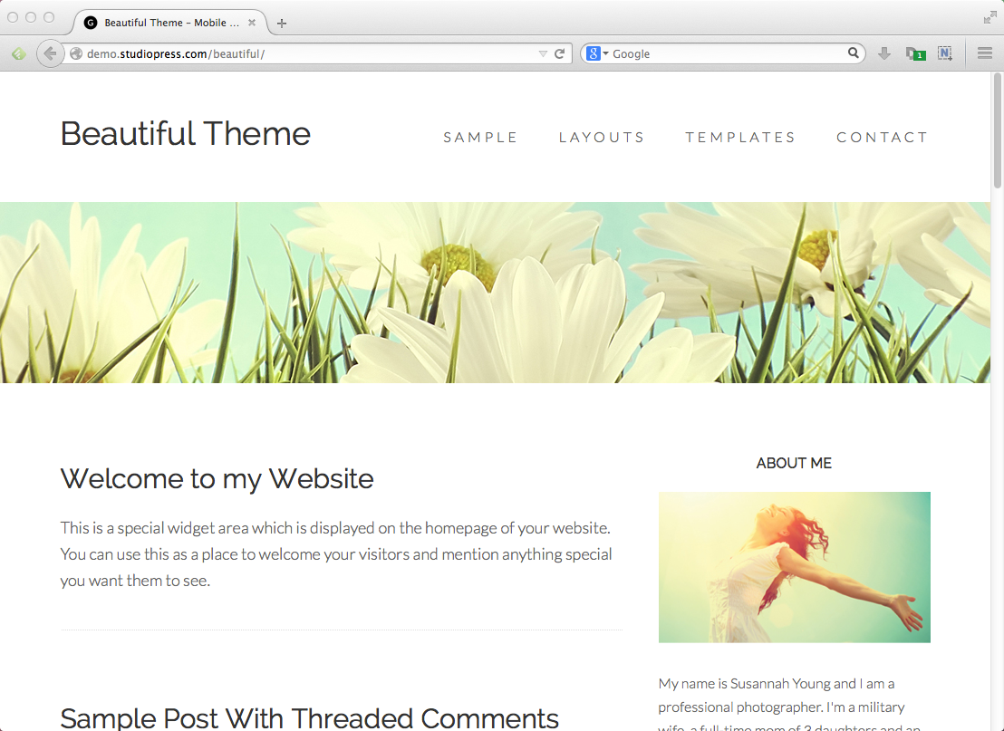 Best blog themes for WordPress: Genesis Beautiful Pro