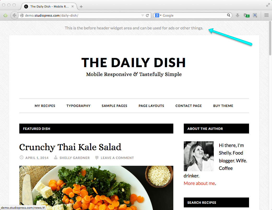 Best Blog Themes for WordPress: Genesis Daily Dish