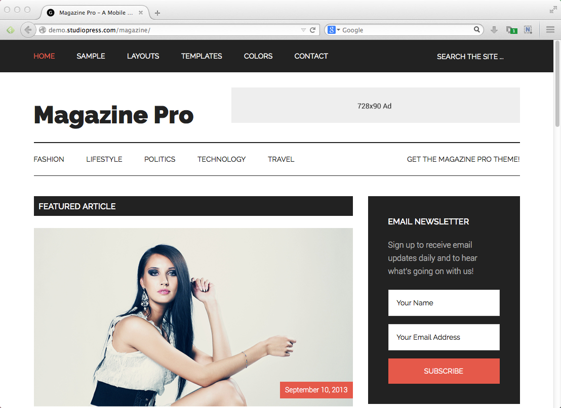 Best Wordpress Themes For Blogs Biz Mavens